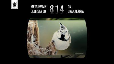 WWF Suomi – Lahja Metsälle
